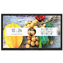 55 inch IR Touch Display,
