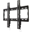 Fixed position wall mount with post